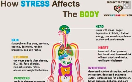 What is stress and what you can do to manage it